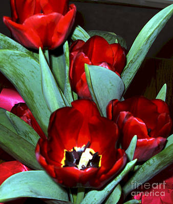 Painting - Red Tulips by Vivian Cook