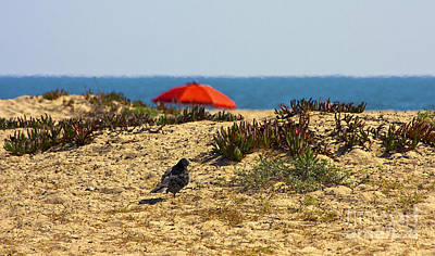 Photograph - Red Umbrella On Sandy Beach Blue Ocean by Jerry Cowart