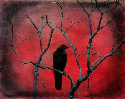 Corvidae Photograph - Red Velvet by Gothicrow Images