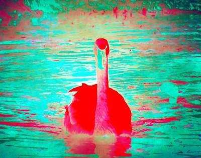 Painting - Red Velvet Swan by Jared Johnson