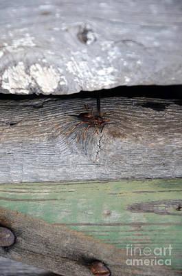 Natural Bridge Station Photograph - Red Wasp 2 by Brenda Dorman