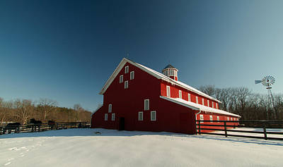 Photograph - Red White And Blue At The Farm by Haren Images- Kriss Haren