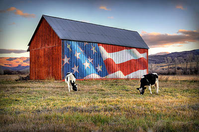 Huntsville Wall Art - Photograph - Red White And Moo by Ryan Smith