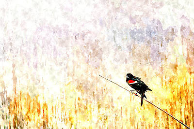 Painting - Red Wing Blackbird 2 by Rick Mosher