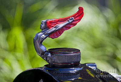 Red Wings Hood Ornament Art Print by Chris Dutton