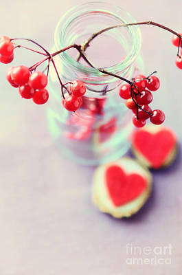 Christmas Cards Photograph - Red Winter Berries by Sabine Jacobs
