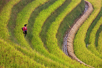 Red Yao Girl On The Rice Terrace Art Print by Keren Su