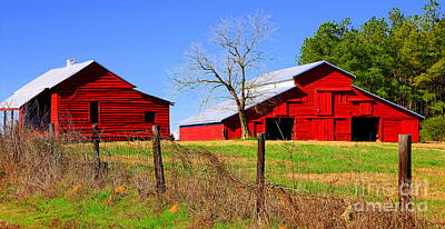 Photograph - Redbarn by Cynthia Mask