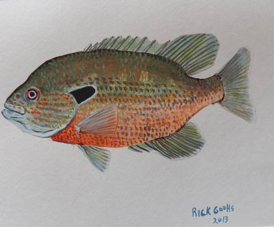 Fisherman In Stream Painting - Redbreast Sunfish by Richard Goohs