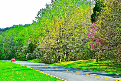 Redbud And Dogwood In Spring At Mile 363 Of Natchez Trace Parkway-tennessee Art Print by Ruth Hager