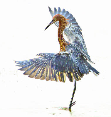 Art Print featuring the digital art Reddish Egret 1 by William Horden
