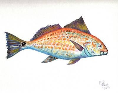 Painting - Redfish by Chris Bajon Jones