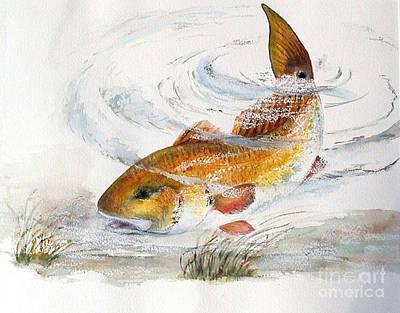Redfish Art Print by Sibby S