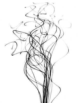 Tendrils Photograph - Reed Stems by Albert Koetsier X-ray