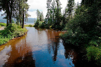 Photograph - Reeder Creek On Priest Lake Idaho by David Patterson
