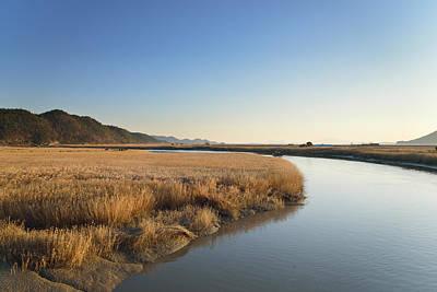 Reeds Field And Boardwalk In Sunchoen Bay In Korea Art Print by Sihyeon Park