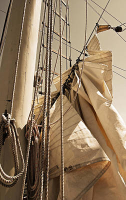 Photograph - Reefing The Mainsail In Sepia by Jani Freimann