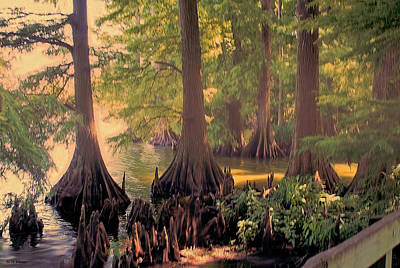 Reelfoot Lake At Sunset Art Print by Bonnie Willis