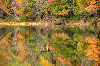 Photograph - Reflected Autumn by Gregory Ballos