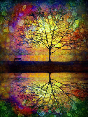 Photograph - Reflected Dreams by Tara Turner