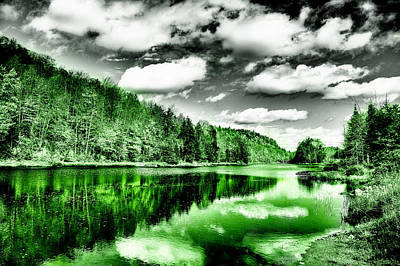 Digital Art - Reflected Greens by David Patterson