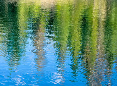 Photograph - Reflected Pines by Joan Herwig