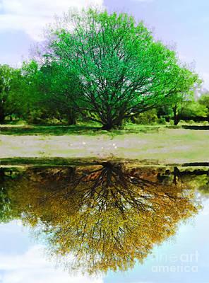 Photograph - Reflected Seasons by Lance Sheridan-Peel