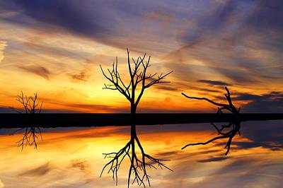 Reflected Sunset Art Print by David Simons