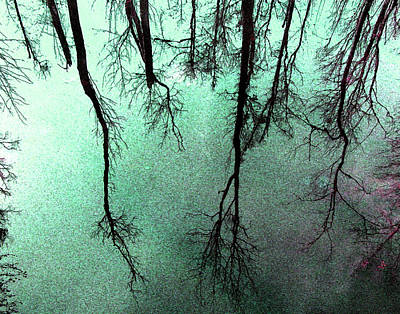 Reflected Trees Print by Joseph Tese