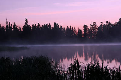 Janet Smith Photograph - Reflecting Fog by Janet Smith