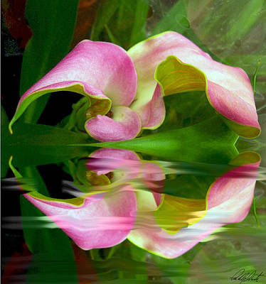 Stamen Mixed Media - Reflecting Lily by Michele Avanti