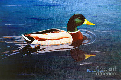 Painting - Reflecting Mallard by Brenda Thour