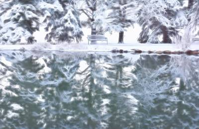 Photograph - Reflecting On Winter by Diane Alexander