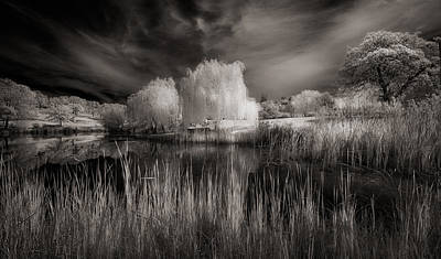 Photograph - Reflecting Pond... by Gary Rose