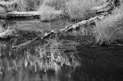 Photograph - Reflecting Pond Glacier National Park Bw by Rich Franco