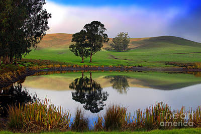 Reflecting Pond In Bucolic Stillness Amongst The Hills Art Print