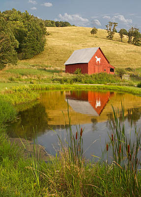 Photograph - Reflecting Red Barn by Dale  Gurvis