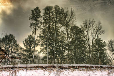 Photograph - Reflecting Upon Snowy Trees by Jason Politte