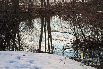 Photograph - Reflecting Waters by William Norton