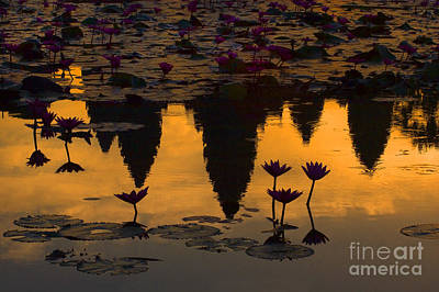 Photograph - Reflection At Angkor Wat by Craig Lovell