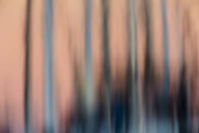 Photograph - Reflection Blur  73a8471 by David Orias