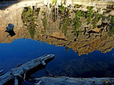 Photograph - Reflection Gem Lake by George Tuffy