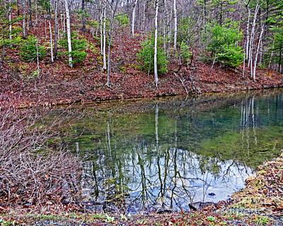 Photograph - Reflection In The Lake by Dawn Gari