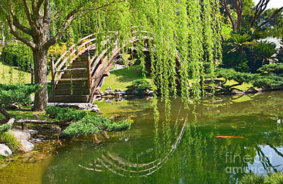Willow Lake Photograph - Reflection - Japanese Garden With Moon Bridge And Lotus Pond And Koi Fish. by Jamie Pham