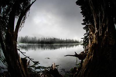 Reflection Lake Through The Stump Art Print by Brian Xavier