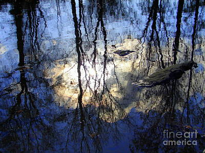 Photograph - Reflection by Lew Davis