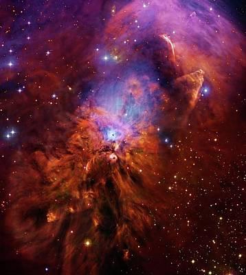 Orion Nebula Photograph - Reflection Nebula Ngc 1999 by Robert Gendler