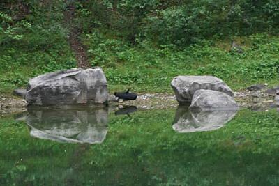 Photograph - Reflection Of 2 Boulders by Phoenix De Vries