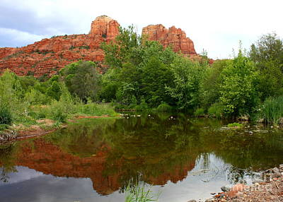 Reflection Of Cathedral Rock Art Print by Carol Groenen