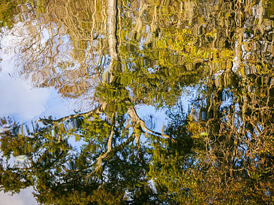 Photograph - Reflection Of October by Carolyn Marshall